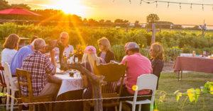 Intimate & Memorable Al Fresco Dinning in Vineyard @ Grape Lakes Farm & Vineyard