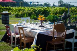 Summer Farm-Fresh Field to Fork Menu in Kingsville @ Grape Lakes Farm & Vineyard